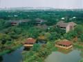 航拍杭州西溪湿地 (3)