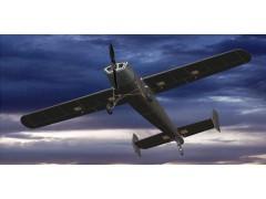 SY-002油动固定翼无人机