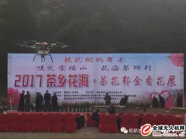 茶鄉花海中飛出了植保無人機