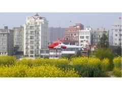 上海寅翅智能油動植保無人直升機機E