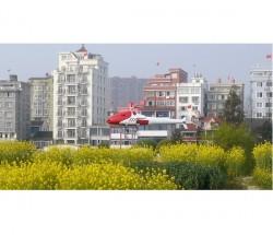 上海寅翅智能油動植保無人直升機機EV-170