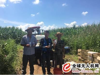 一篇文章读懂粘虫灾害的起因、危害与防治方法(极飞农业)