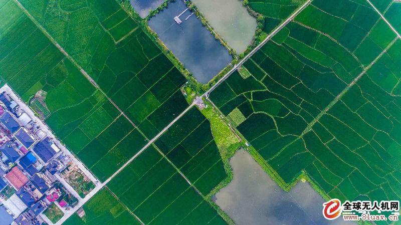 """无人机国土测绘""""蓝海""""已来,如何才能抓住机会?"""