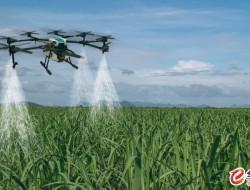 台无人机喷洒农药需先得证书 训练课程最快 8 月开课
