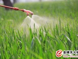 高温天气喷施农药,这些问题你注意了吗?