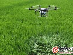 大疆MG-1P 系列 农业植?;? /><a target=