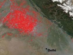 焚燒秸稈是印度空氣污染加劇的主要原因之一
