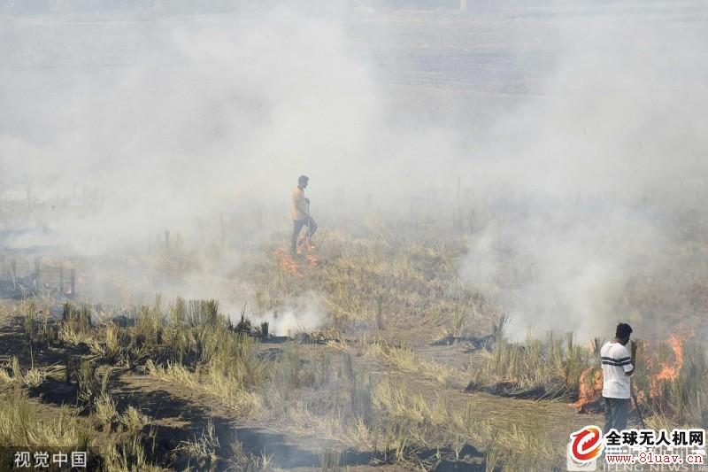 焚烧秸秆是印度空气污染加剧的原因之一