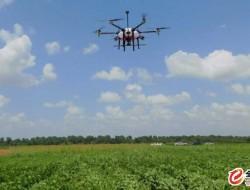 无人机技术将用于农场的杂草控制