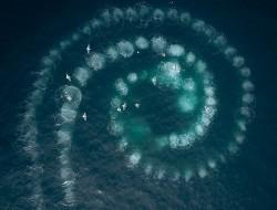 七个世界一个星球:无人机揭示了七个非凡大陆的