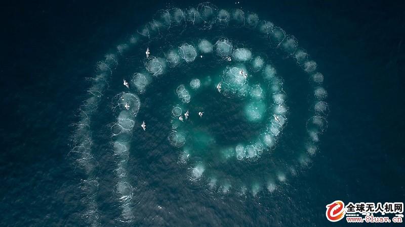 七个世界一个星球:无人机揭示了七个非凡大陆的奇迹