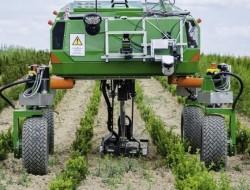 农业机器人市场有望健康发展