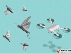 印度可能会使用无人机对付蝗虫