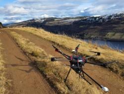 无人机帮助解决苏格兰高地的树木病