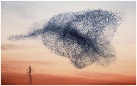 无人机蜂群组网数据链